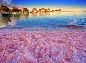 лучшие пляжи с розовым песком